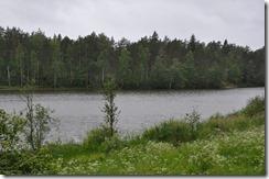 forets et lacs de Carélie