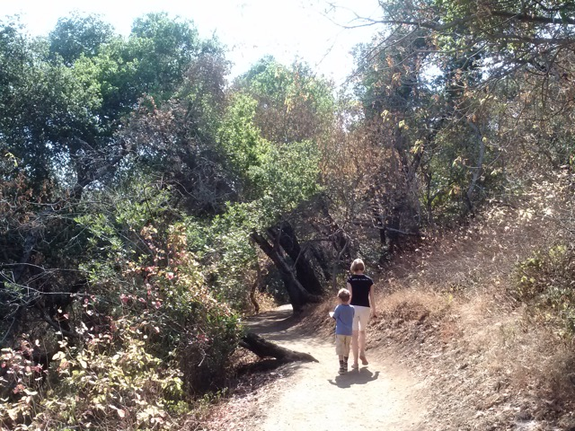 Rancho San Antonio Hike