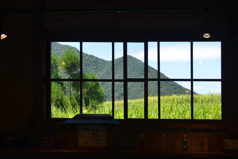 小豆島 こまめ食堂の窓から見える美しい棚田の風景