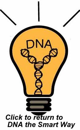 Origins of mtDNA Haplogroups | WorldFamilies net