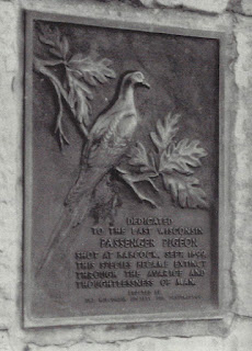 Figure 6 from A Country so Full of Game, JJ Dinsmore. Plaque at Wyalusing State Park in southwestern Wisconsin commemorating the demise of the passenger pigeon. Courtesy Mike Meetz.