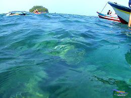 pulau harapan, 29-30 agustus 2015 SJCam 45