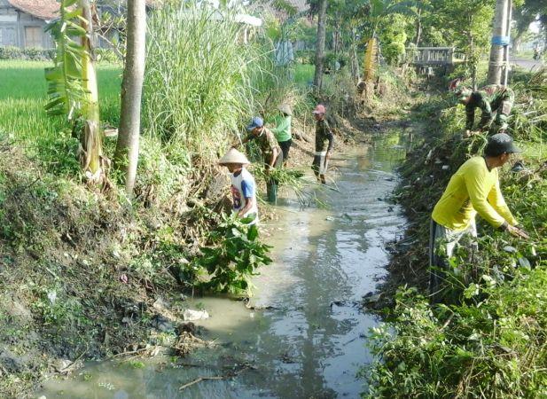 Menuju Swasembada Pangan, Petani Ngawi Dan TNI Gotong Royong Benahi Saluran Irigasi