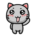 Cuty Gray Cat icon