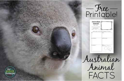 Free Fact Sheet