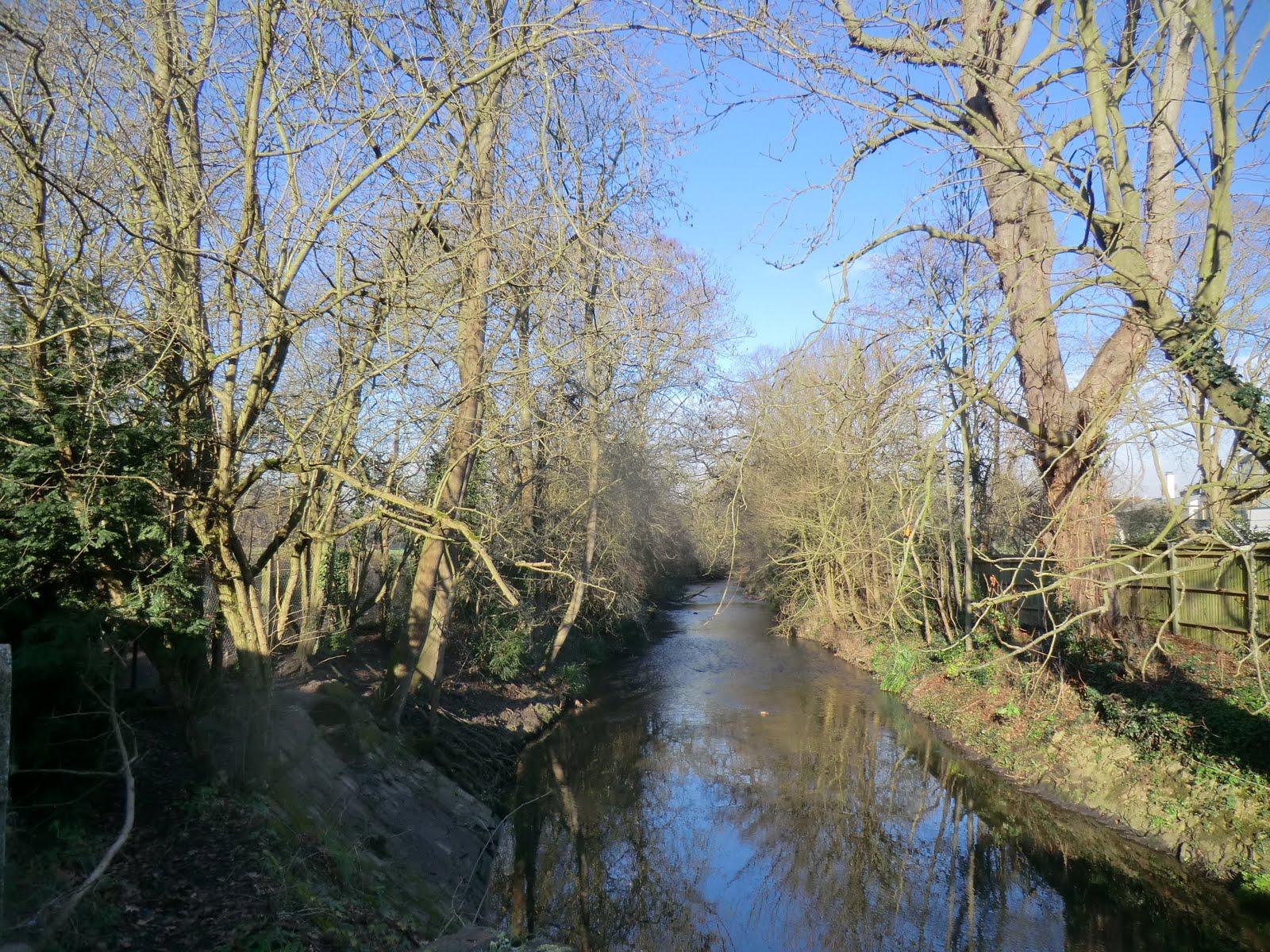 CIMG2350 Beverley Brook in Palewell Common