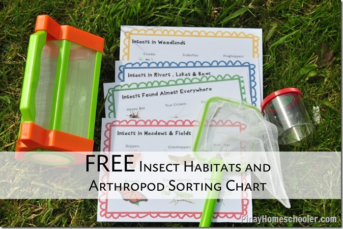 FREE Insect Habitats Learning Material