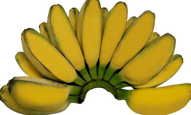 Jenis Buah Pisang yang Cocok untuk Diet dan Sebagai Sarapan untuk Diet