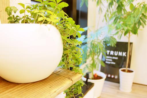TRUNK大阪谷町のレンタルスペース店内写真