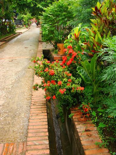 La calle tradicional