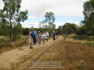 02 Rocky Gully Wetlands-Loop & Main trail (4)