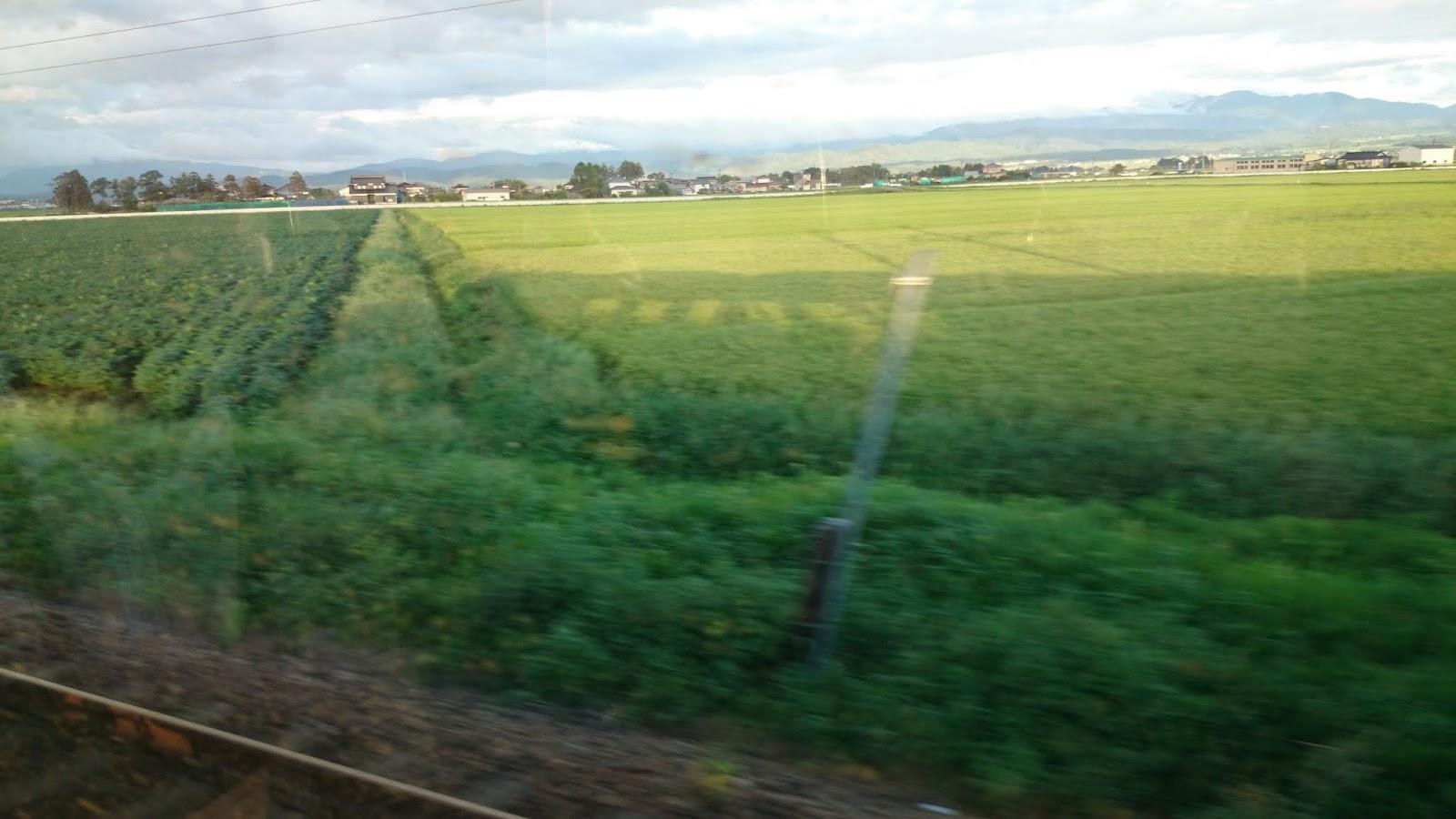 列車の影が…