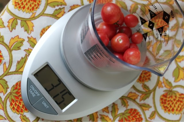 A well seasoned life review eatsmart precision pro for Perfect kitchen pro smart scale