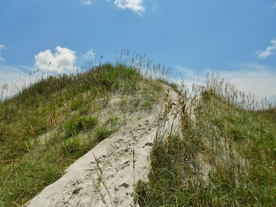 Trail over the Dunes to Campsite 1
