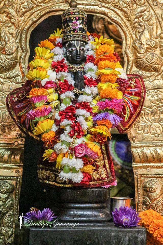 ISKCON Mayapur Deity Darshan 06 Jan 2015 (25)