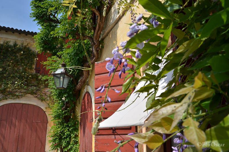 Villa Maser mostra ciliegie 38