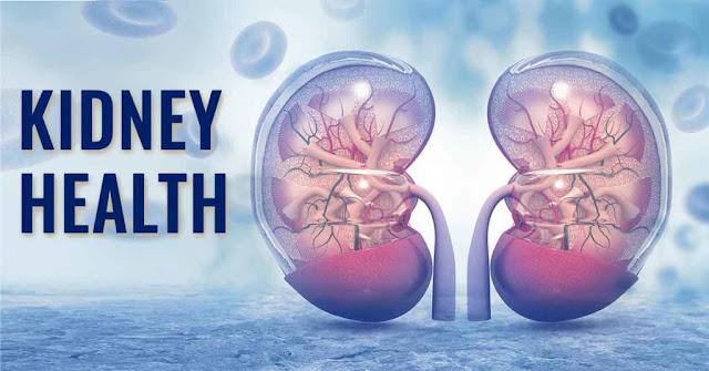 गुर्दे के मरीज किडनी फेल्योर लोगों का खान पान डाइट चार्ट | Kidney Failure and kidney Patient Diet Chart in Hindi