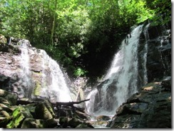 Base of Soco Falls