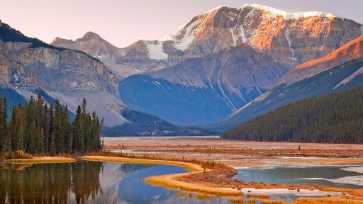 Mount Kitchener and Sunwapta River, Jasper National Park, Alberta, Canada.jpg