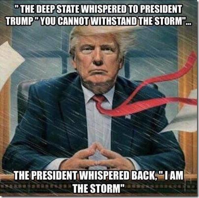 trump i am the storm