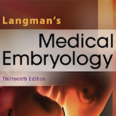 Langman's Medical Embryolog 13