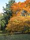 Obrázek: Den stromů 2012 012.jpg