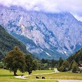 Logarska dolina - Vika-9060.jpg