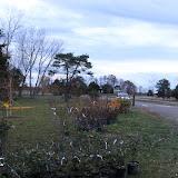 Hammo Fall Planting - Jim Murtagh - BC3G2504.jpg
