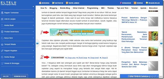 2 (dua) Unit Iklan yang Dipasang di Tengah Postingan Blogger atau Blogspot
