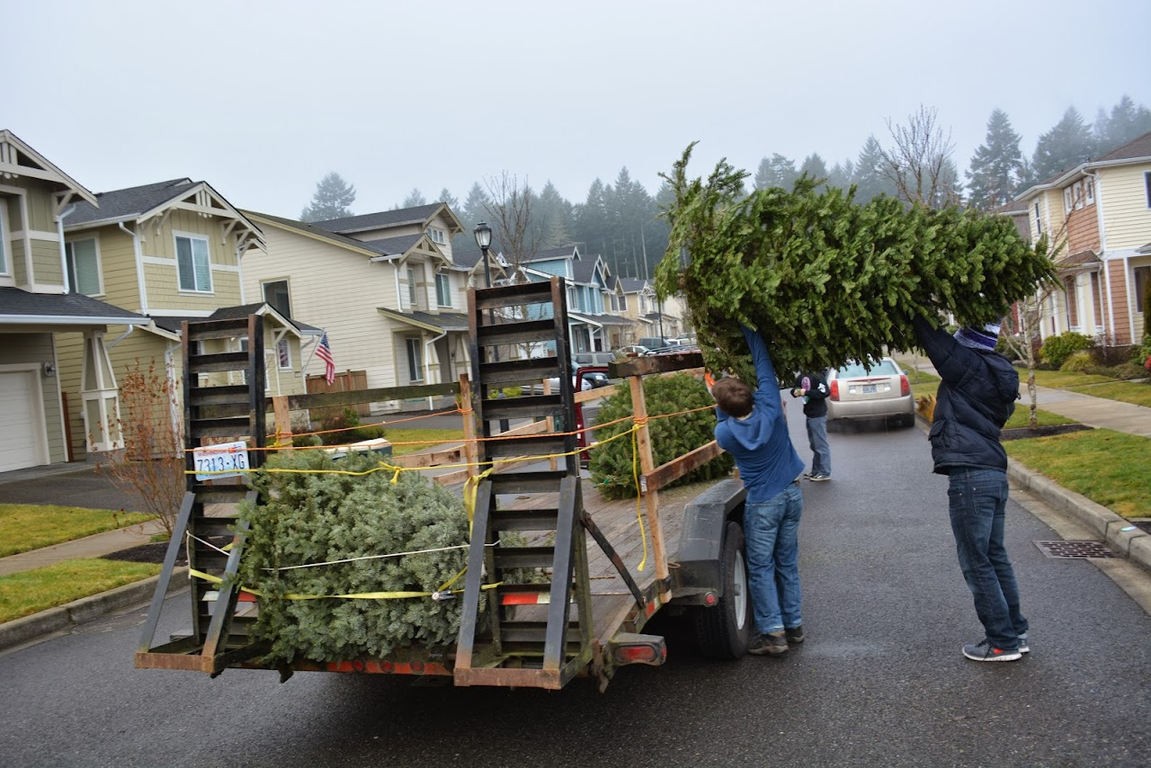 Christmas Tree Pickup 2014 - DSC_0069.jpg