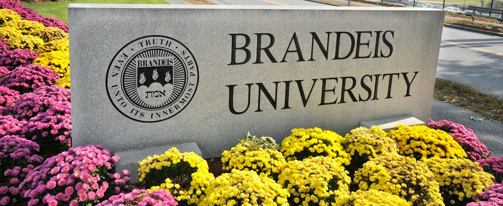 Racist bullying countenanced at Brandeis University