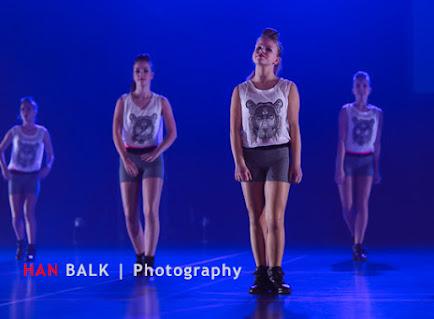 Han Balk Voorster Dansdag 2016-4593-2.jpg