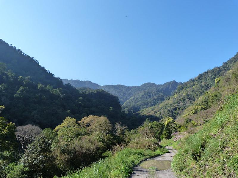 TAIWAN. Dans une region ou habitent les aborigenes de l ethnie Atayal - P1110739.JPG