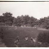 n008-036-1966-tabor-sikfokut.jpg