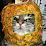 Gato Na Feira's profile photo