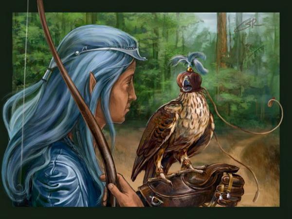 Elven Hunter Lord, Spirit Companion 4