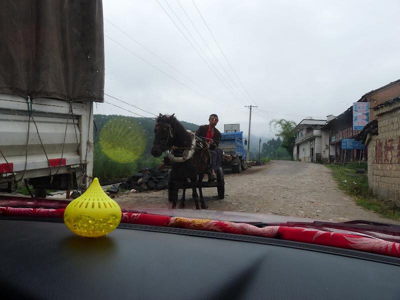 Chine .Yunnan,Menglian ,Tenchong, He shun, Chongning B - Picture%2B787.jpg