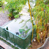Key West Vacation - 116_5436.JPG