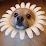 kenna barker's profile photo