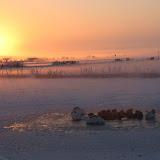 Winterkiekjes Servicetv - Ingezonden%2Bwinterfoto%2527s%2B2011-2012_80.jpg