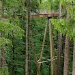 World's Longest Tree Top Walk in Bavaria | Amusing Planet