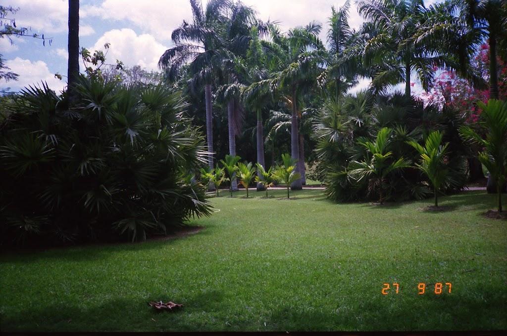 3130Darwin Botanic Gardens
