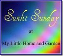 Sunlit Sunday
