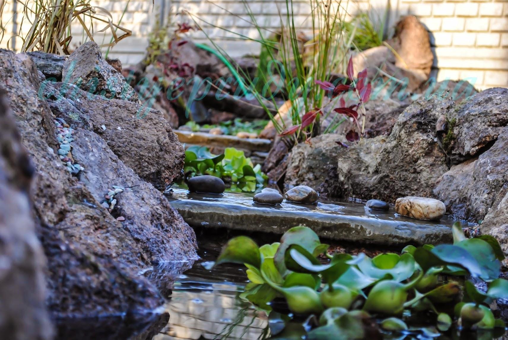 Ландшафтный дизайн. Чистые пруды