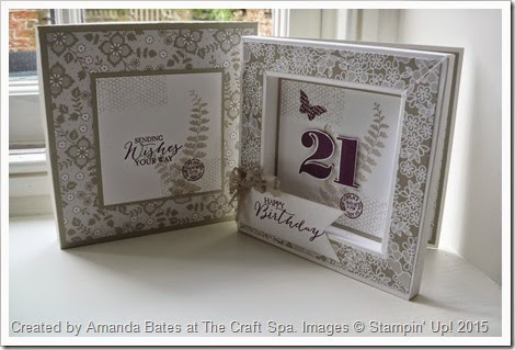 Butterfly Basics 21st Box Frame Card 006