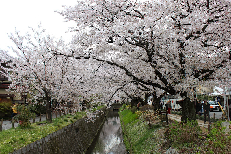 2014 Japan - Dag 8 - marjolein-IMG_1149-0050.JPG