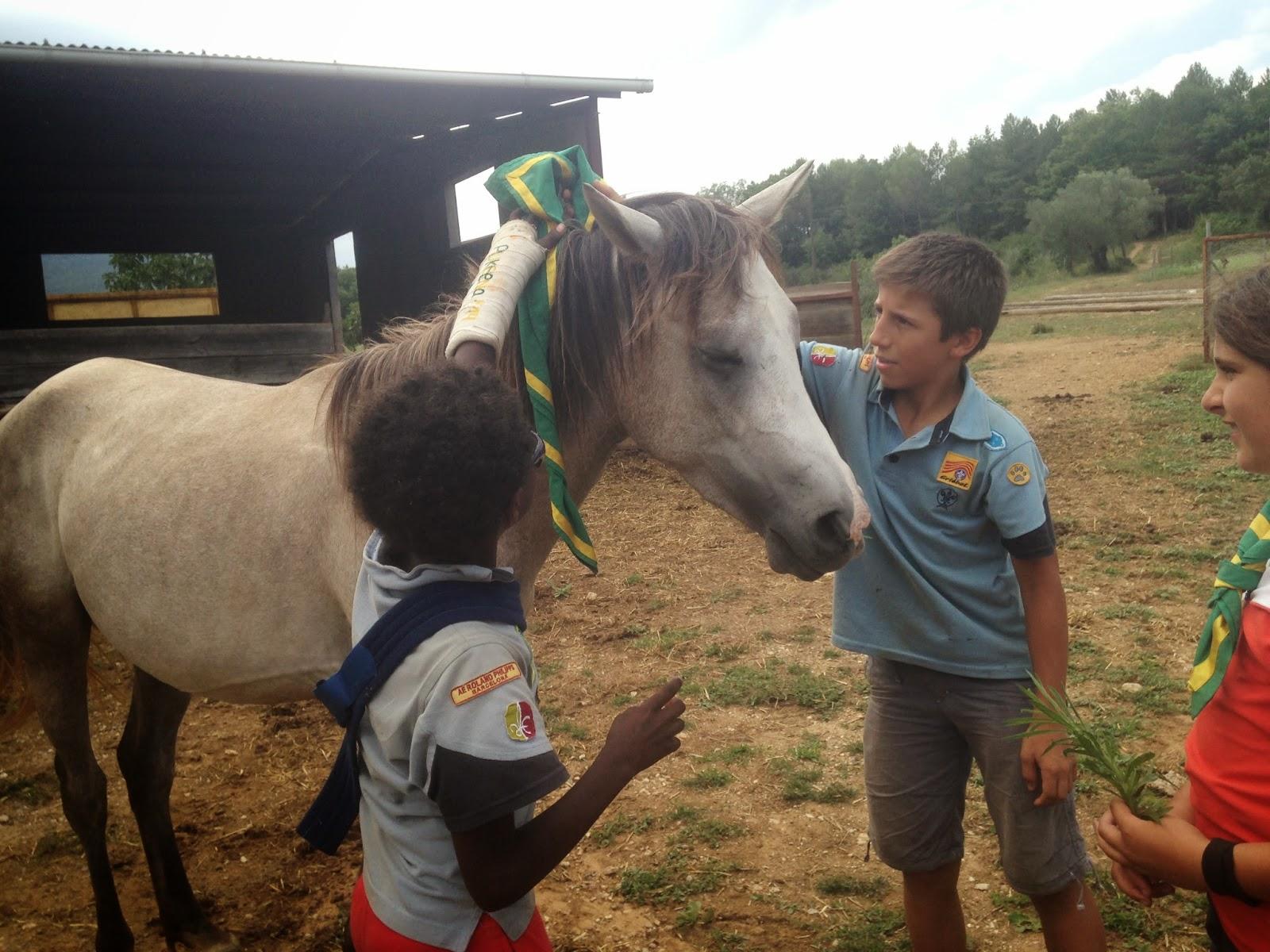 Campaments Estiu Cabanelles 2014 - IMG_0044.JPG