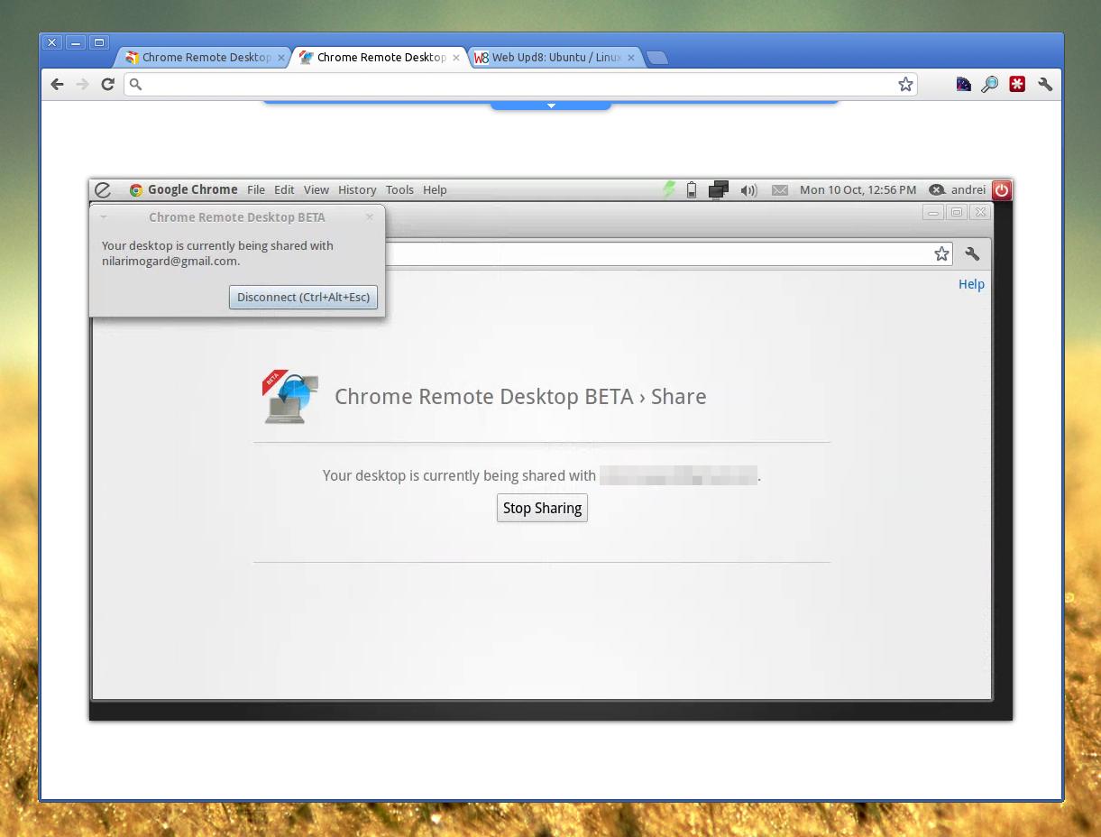 Google Releases Cross-Platform Remote Desktop Extension
