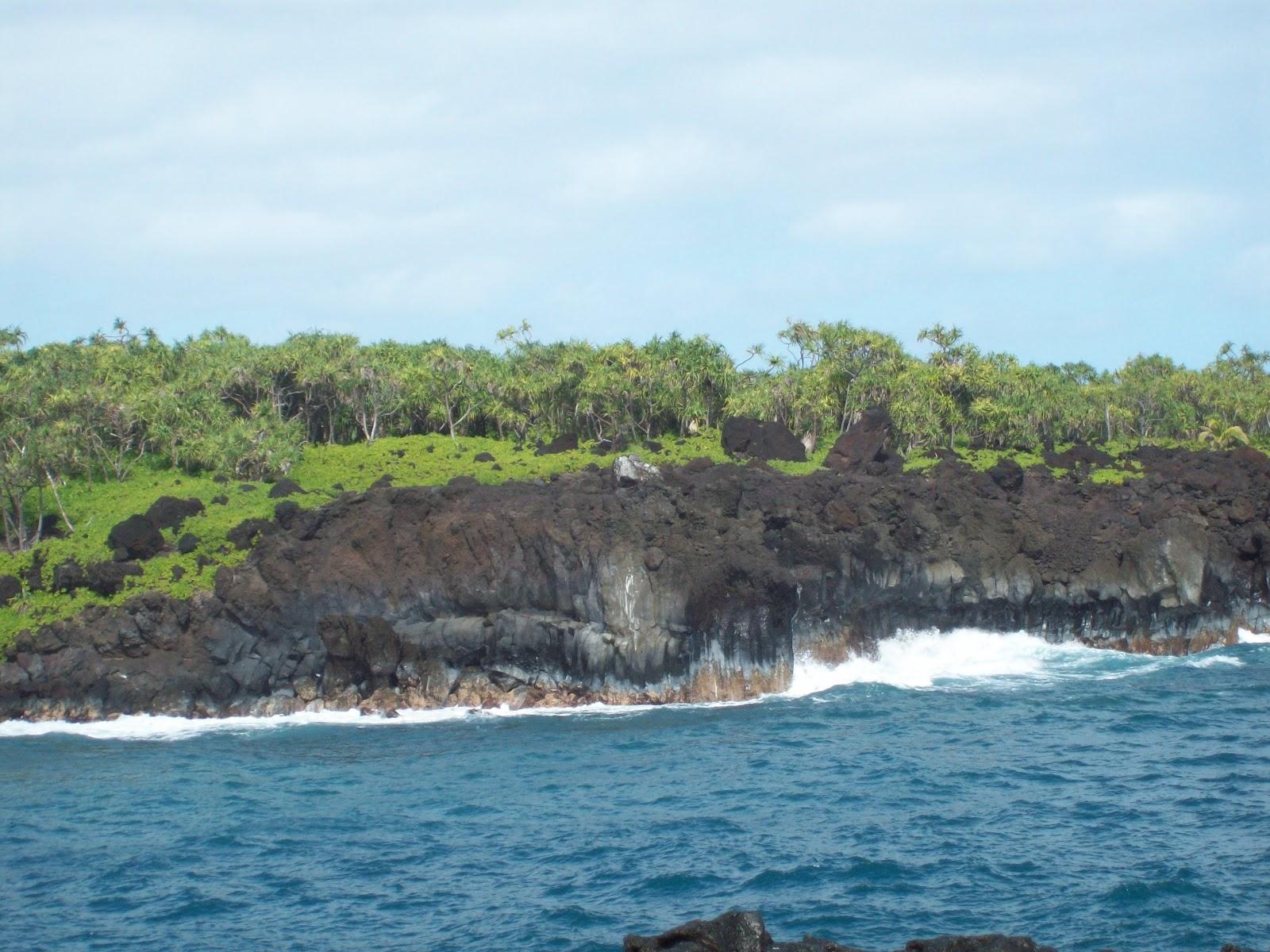 Hawaii Day 5 - 114_1529.JPG