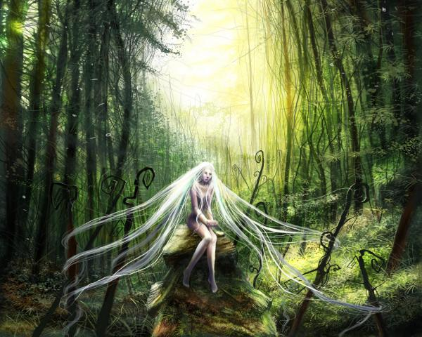 Magic Of The Wood, Green Witches